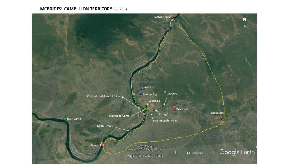 MCBRIDES CAMP LION TERRITORY